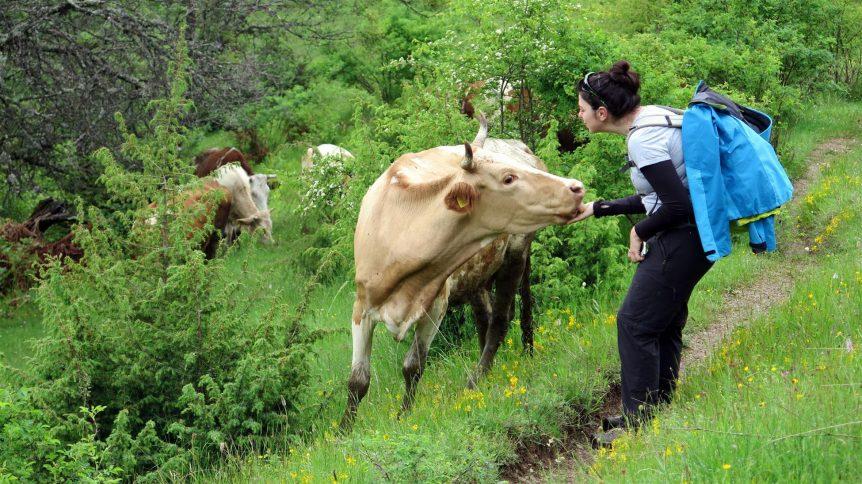 Balkan Dağları Turu 3 862x484
