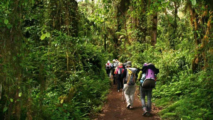 Kilimanjaro Turu 14 862x485
