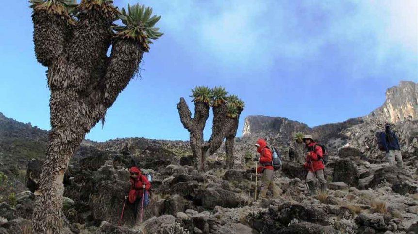 Kilimanjaro Turu 7 862x484