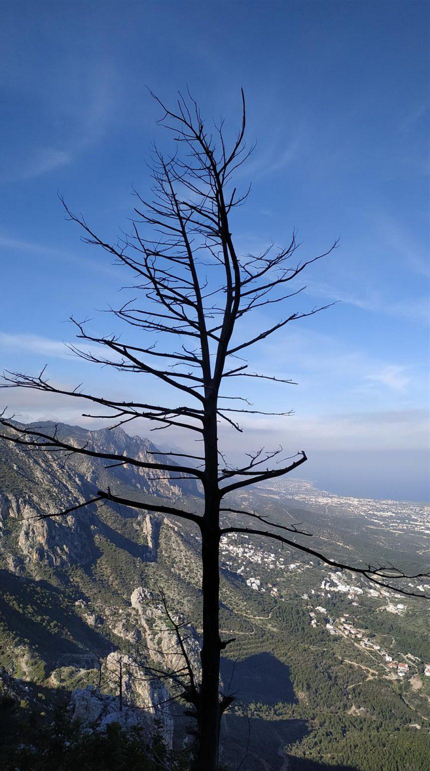 Kıbrıs Turu 44 862x1544
