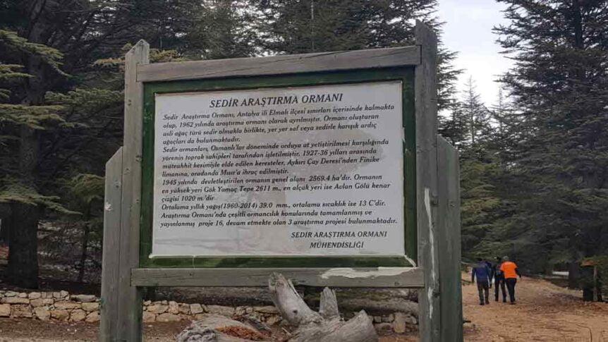 Orman Banyosu Turu 6 862x485